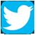 Logo Twitter Ermhes